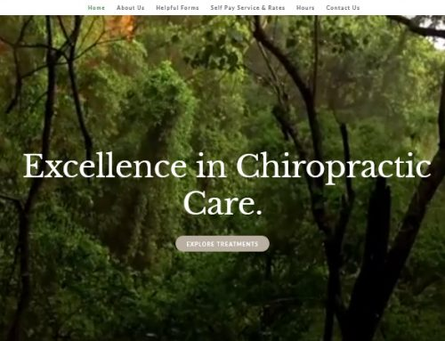 Chiropractor Ormond Beach